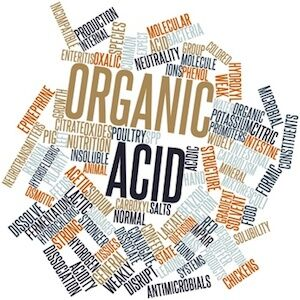 Word cloud for Organic acid (Demo)
