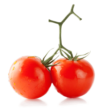 tomato_footer