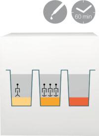 lab-procedure-62