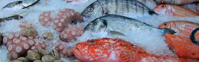 Fiskeallergi