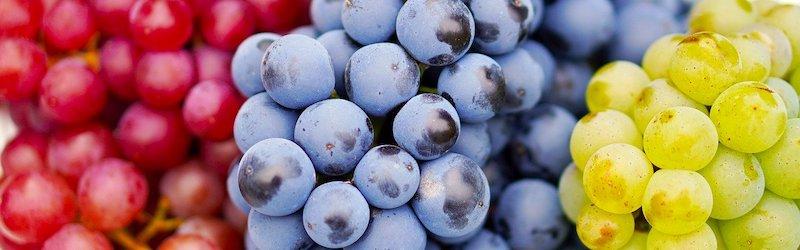 Fruktoseintolerance